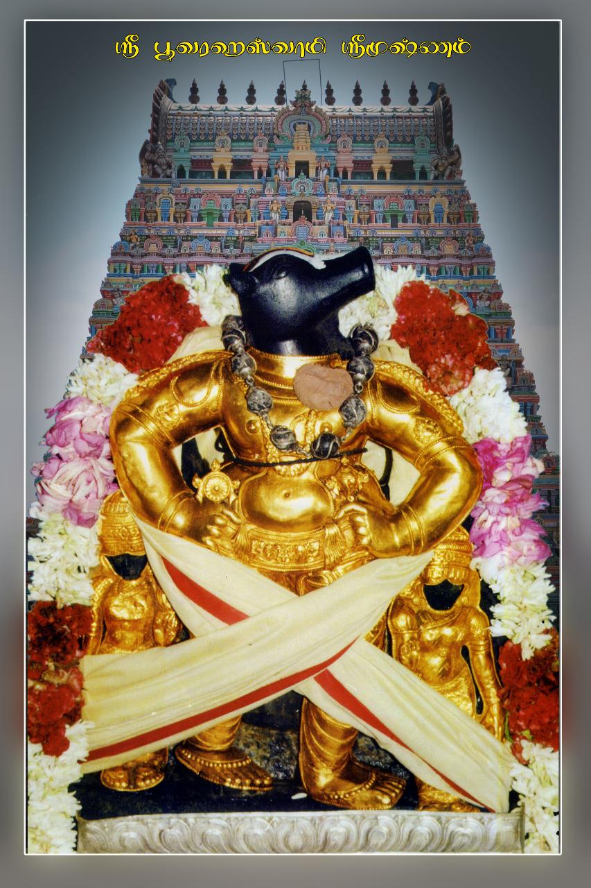 Sri Bhuvaragaperumal Swamy Temple- Srimushnam