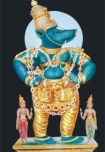 Sri Bhuvragaperumal , Srimushnam