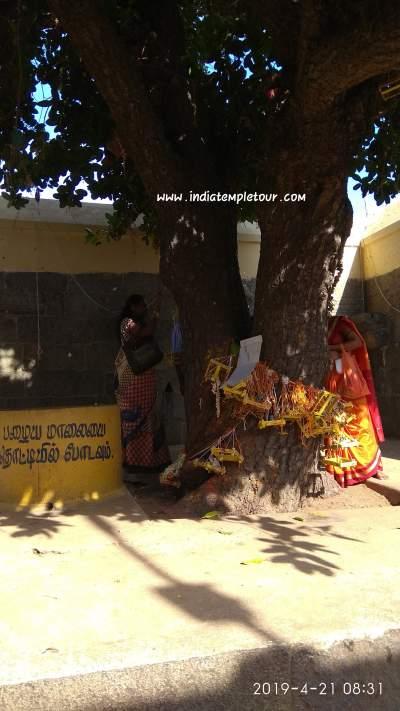 Sri Nitya kalayana perumal temple-Tiruvidanthai