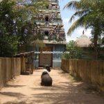 Sri Palvanna Nathar Temple-Sivapuri (Tirukazippalai)